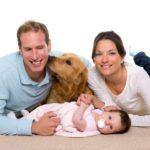 Celos mascotas ante llegada bebé