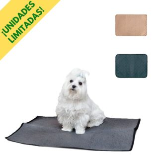 Washable and reusable pee pad for dogs and cats