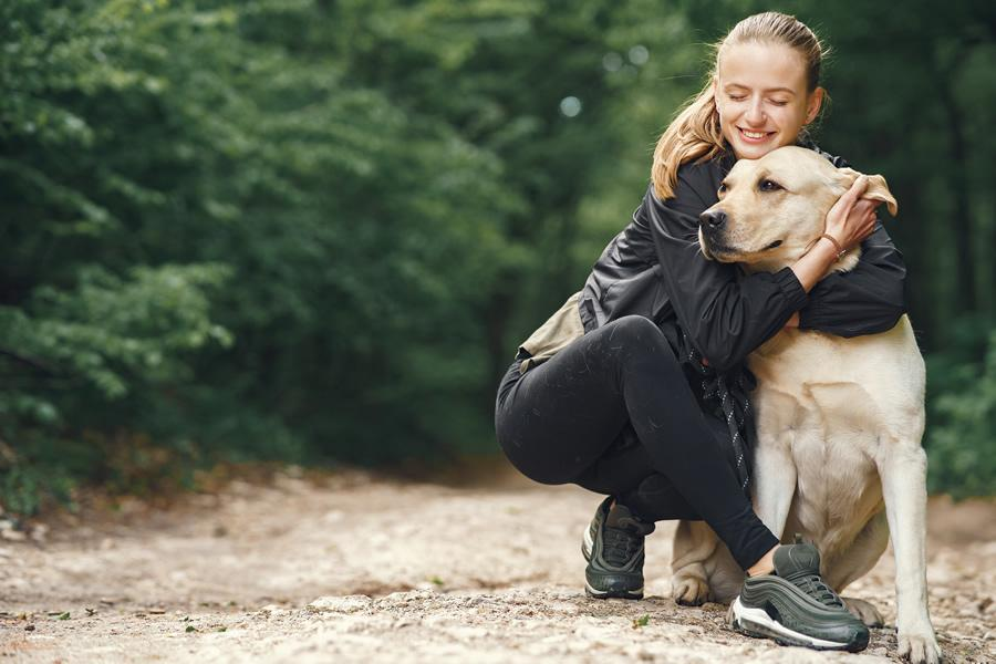 antiparasitarios naturales para perros y gatos