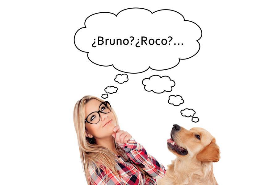 nombres de perros
