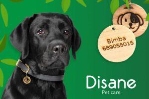 chapa identificativa para perros
